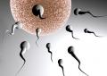 Uno studio conferma il potere dello sperma come elisir di felicità